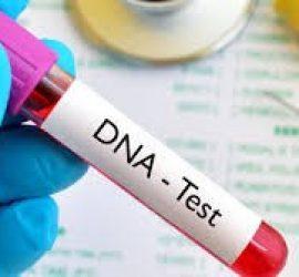 Le test ADN prénatal : un acte légal ?